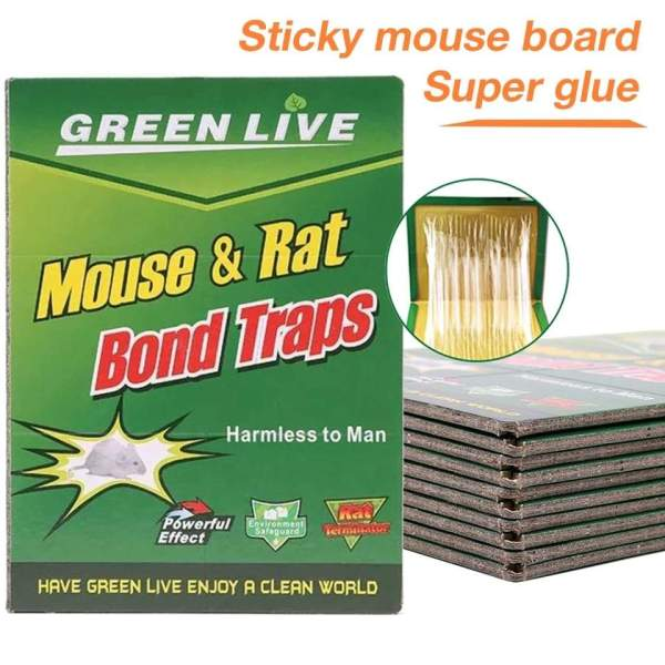1238 Mice Traps Sticky Boards Strongly Adhesive That Work Capturing Indoor and Outdoor - Bulkysellers.com