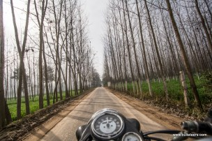 On the way through the roads of ropar, to the Kiker Lodge, venue for Rider Mania 2015