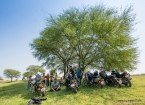bulleteers huddled in the shade of a tree with the royal enfield motorcycles, a harley davidson and a hero karizma in the grasslands of pagara, gwalior
