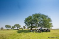 all the bulleteers huddled under a tree with their royal enfield motorcycles, at pagara dam, gwalior