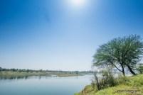 the lake at pagara dam, gwalior. shot during our breakfast ride