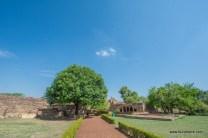 surwaya-shivpuri-2365