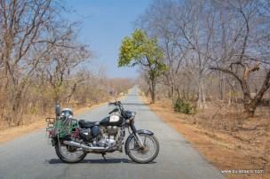 palpur-kuno-road-2592