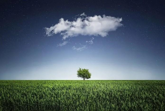Cloud Makes Sense for Your E-Commerce Store