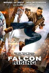 FalconPoster