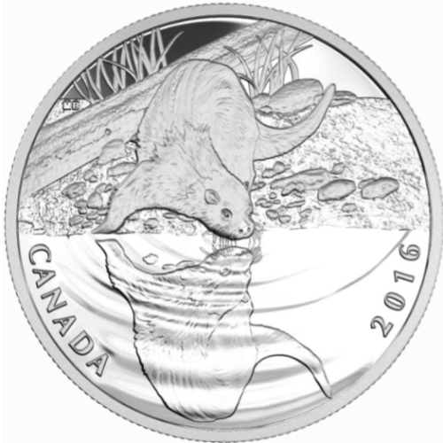 2016 $10 Fine Silver Coin - Reflections of Wildlife Otter