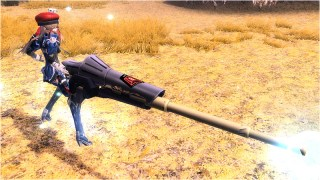 A rare weapon 2