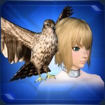 羽ばたく茶鷹 Flapping Brown Falcon