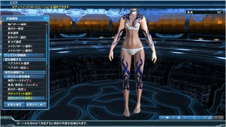 2 Body Paints PSO2