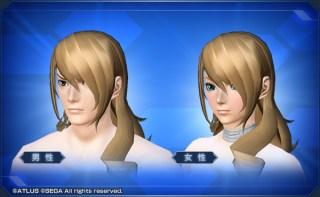 桐条美鶴ヘアー Mitsuru Kirijo Hair