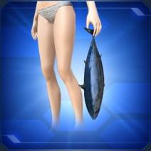 手持ちカツオ Held Skipjack Tuna