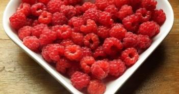 diet diaries - Vol.1 my current diet