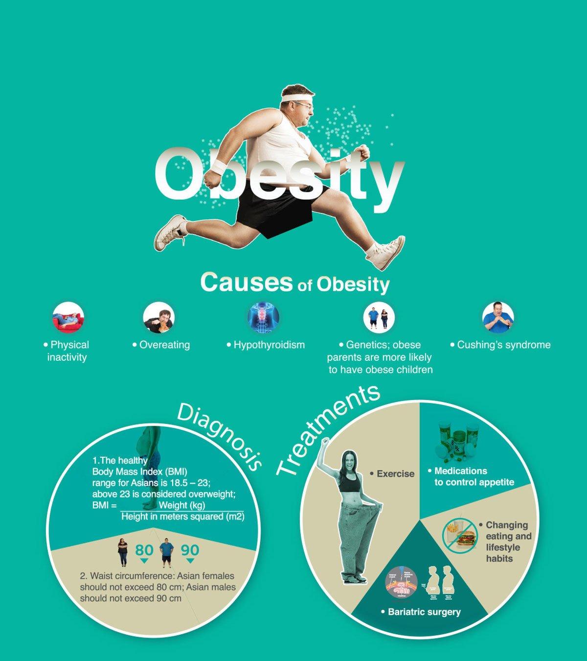Causes of Obesity   Bumrungrad Hospital Thailand