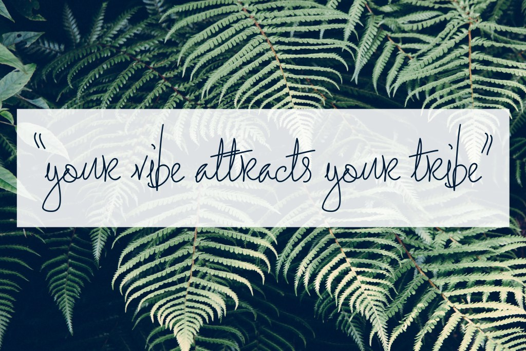 your vibe attracts your tribe header images