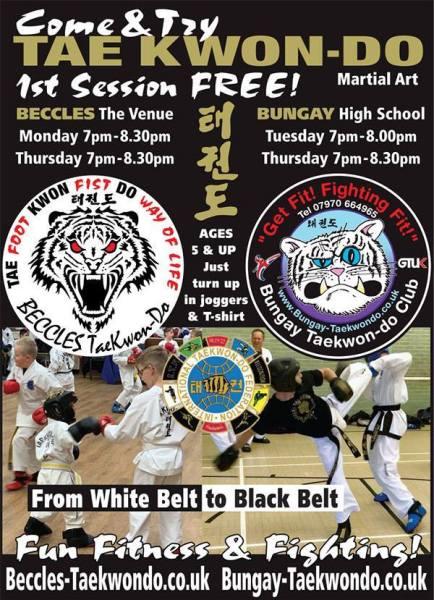Bungay Taekwondo Students