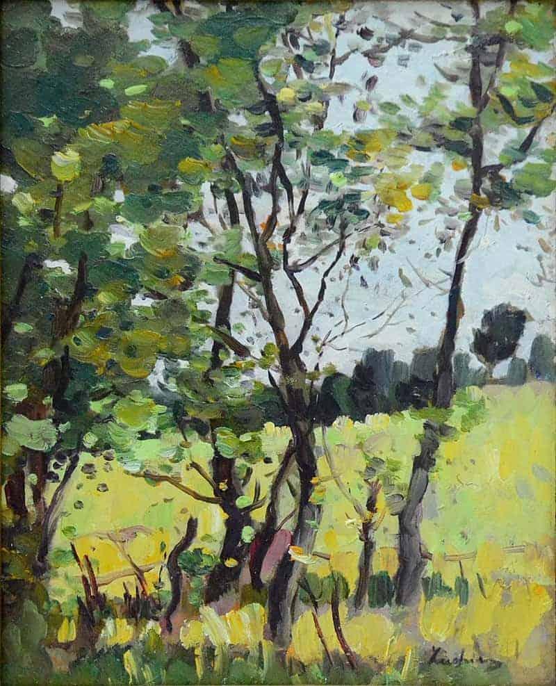 River meadow in Poduri
