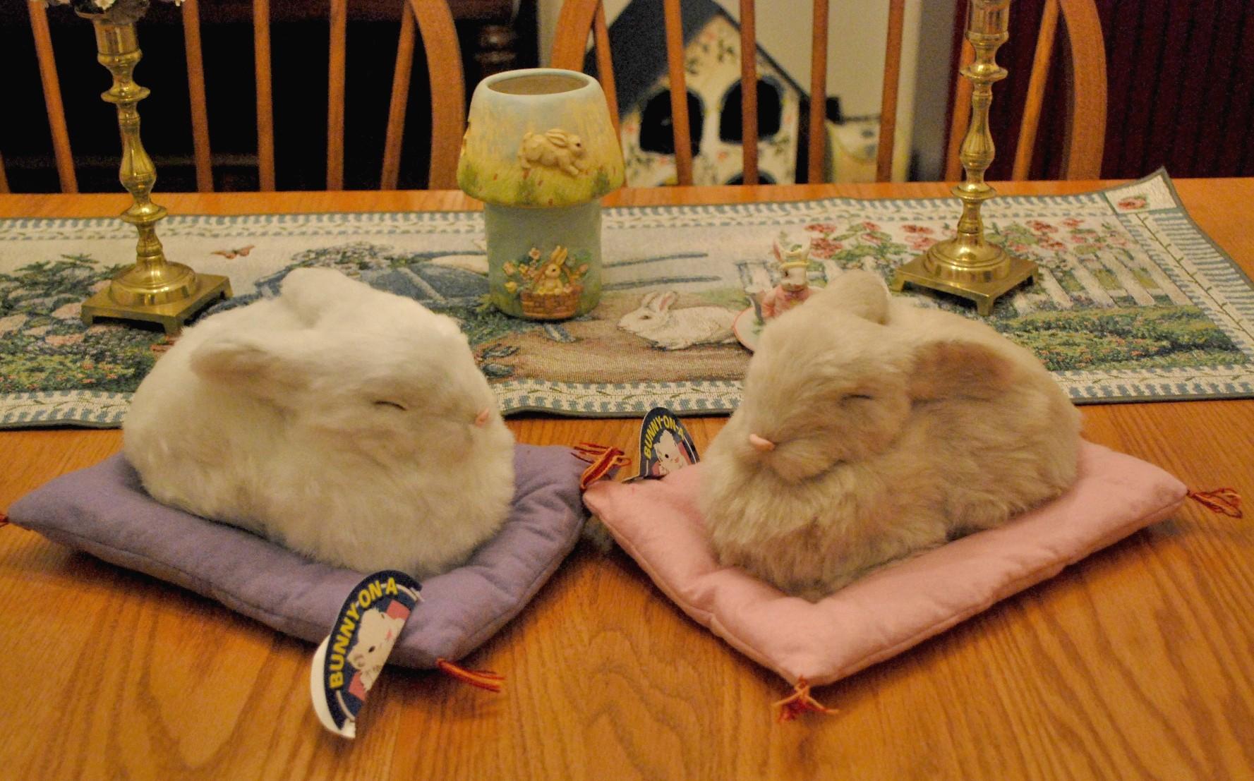 BUNNYRABBITcom Bunny Pillow Rabbit Pillow Bunnyrabbit Pillow Bunny Rabbit Gift Items Bunny