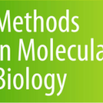 The method paper of Anja is now accepted in Methods in Molecular Biology