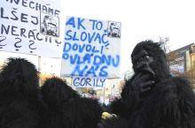 Gorila_protesta a Bratislava (foto_aktuality-sk)