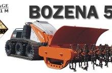bozena5