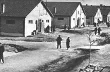 sered-campo-ebrei