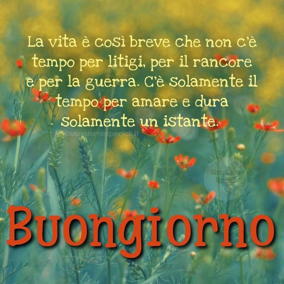 An den Beitrag angehängtes Bild: https://i0.wp.com/www.buongiornospeciali.it/wp-content/uploads/2020/08/Buongiorno-28.jpg?w=960&ssl=1