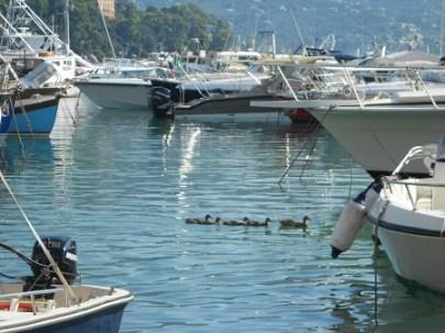 San Fruttuoso e Santa Margherita in barca per una giornata