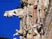 Siena - Particolare del Duomo