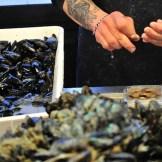 Pulitura di cozze e altri molluschi