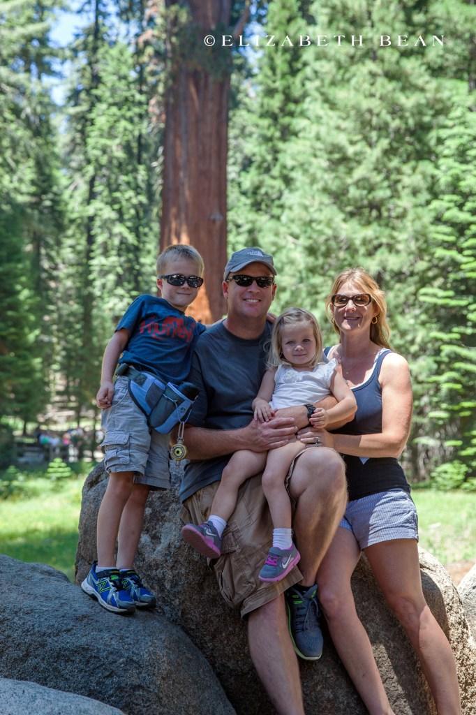 070114 Sequoia 27