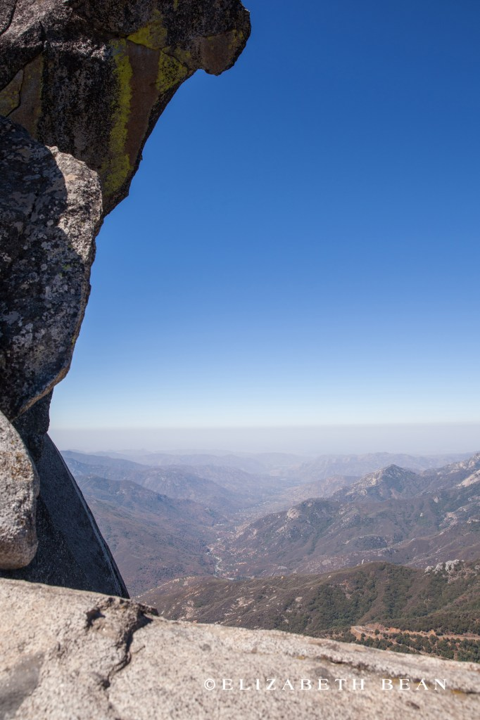070214 Sequoia 07