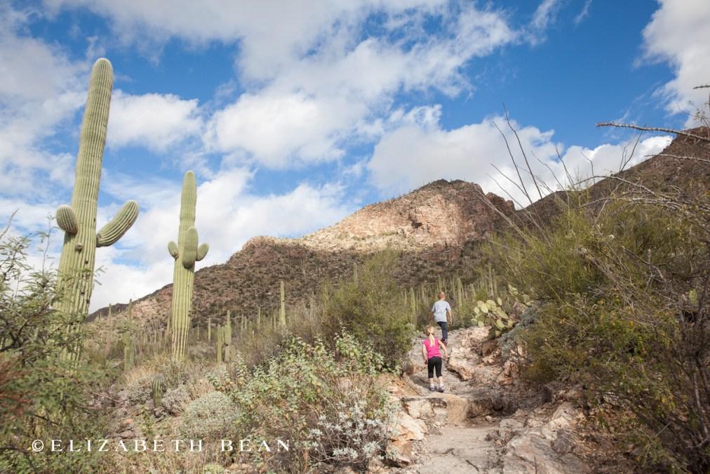 112615 Tucson 26