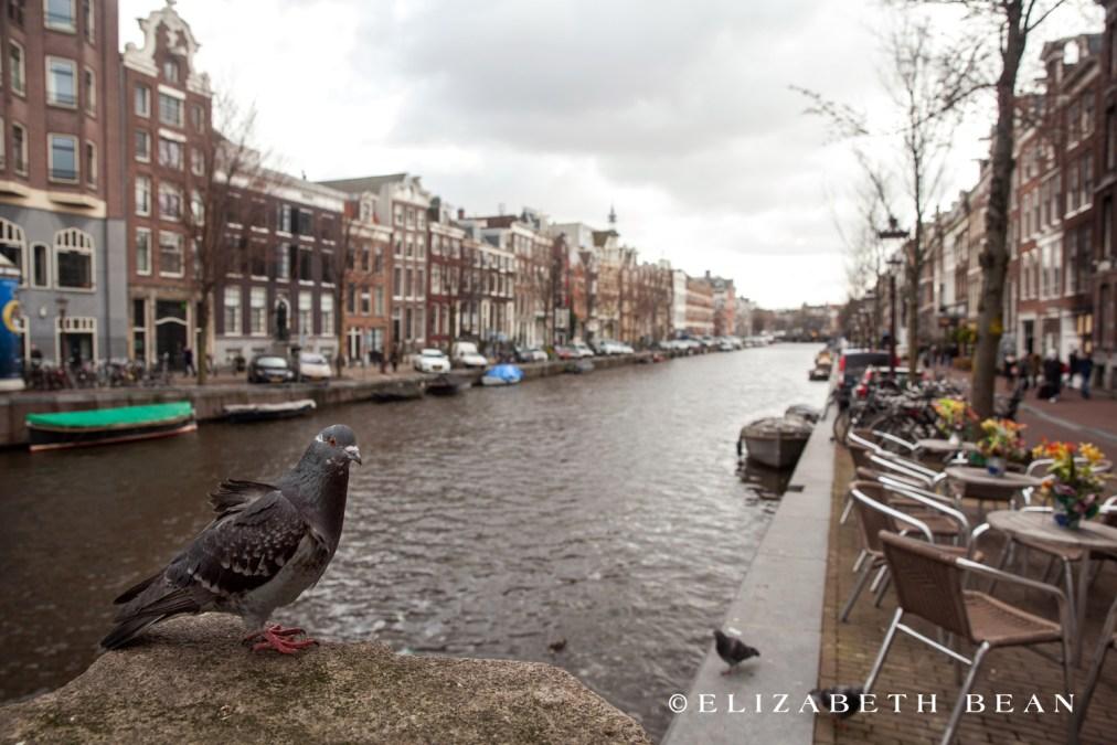 033015 Amsterdam 007