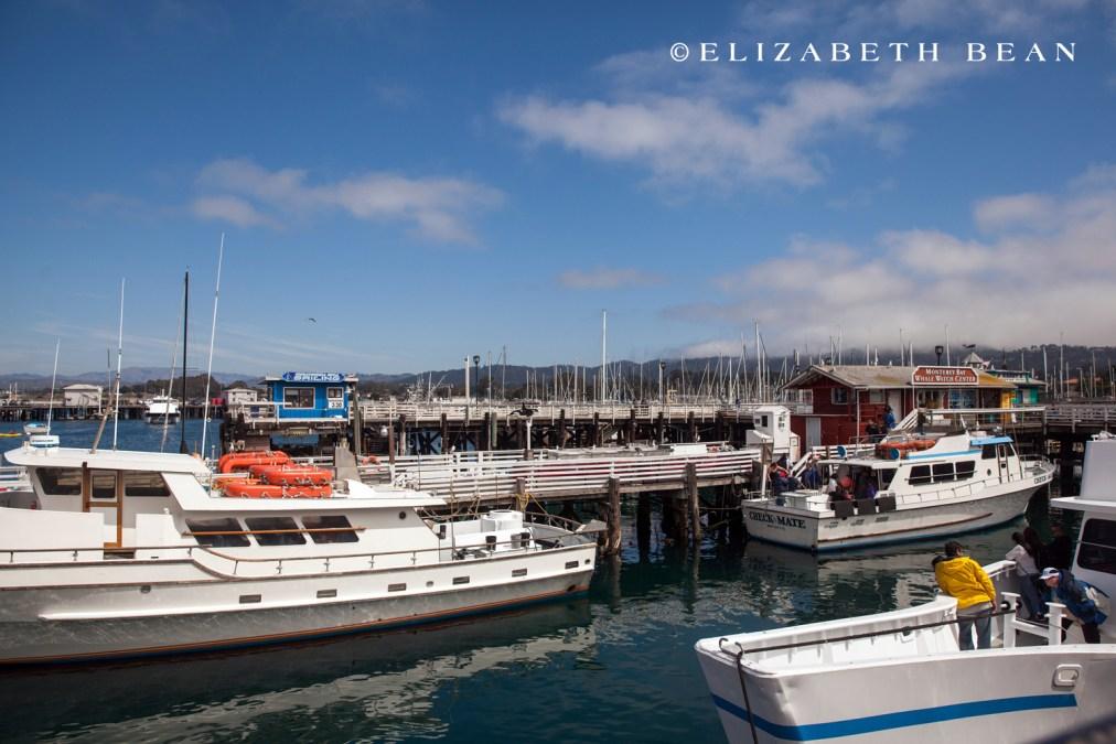 053015 Monterey 08