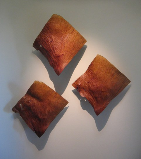 "17"" x 17"" (each panel) Madrone Burl"