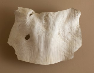 "34"" x 22"" x 9"" Bleached Madrone Burl '09"