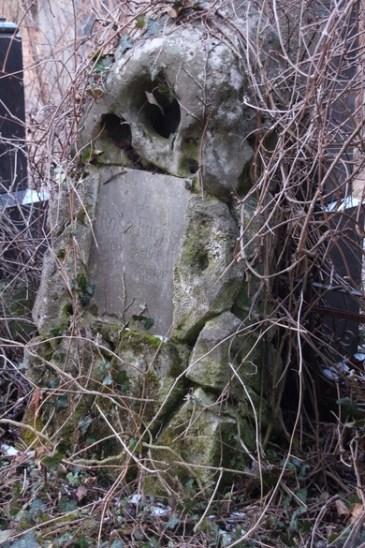 Verfallenes, bewachsenes Grab auf dem jüdischen Friedhof in Wien