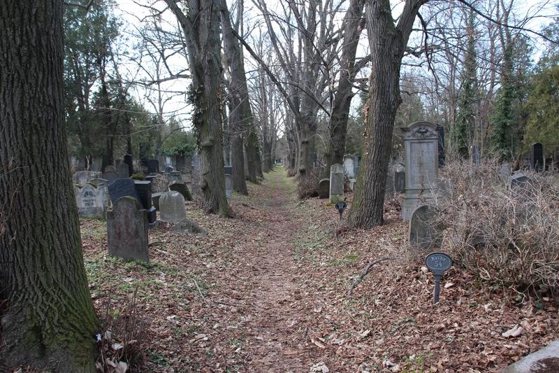 Verfallener jüdischer Friedhof in Wien
