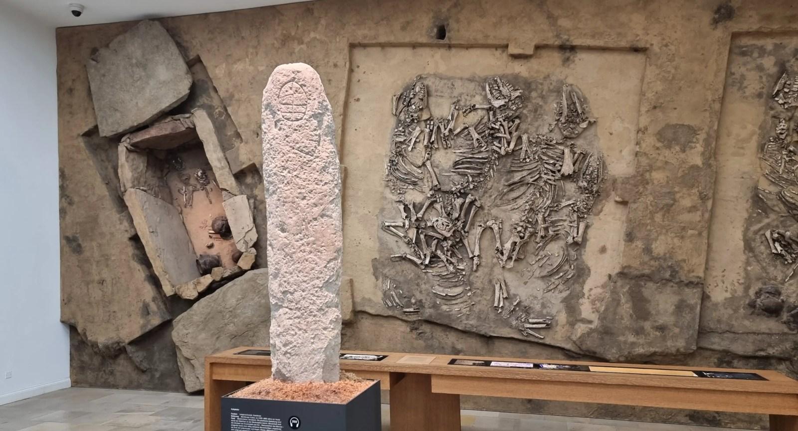 Museum in Halle – So spannend kann ein archäologisches Museum sein