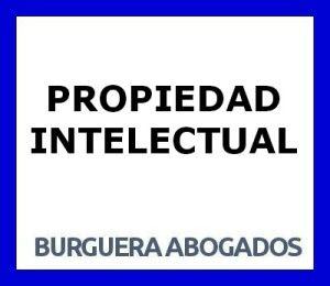 PROPRIETA 'INTELLETTUALE