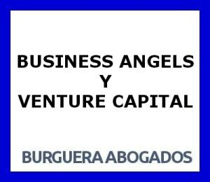 BUSINESS ANGELS Y VENTURE CAPITAL