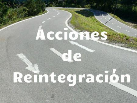 acciones de reintegracion