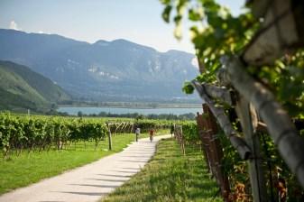 Die mediterranen Talradwege in Südtirols Süden
