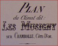 map of musigny c1890 including owners
