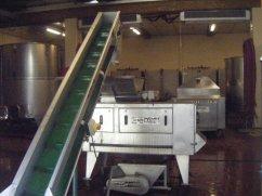 Cuverie Conveyor Destemmer & Press behind