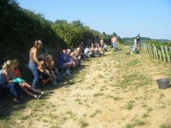 Vendangeurs at rest Savigny Ile des Vergelesses