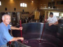 Gevrey vieille vigne before fermentation