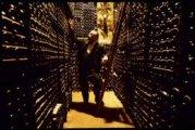 cellar sale of la tour d'argent