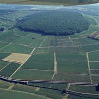 Hill of Corton