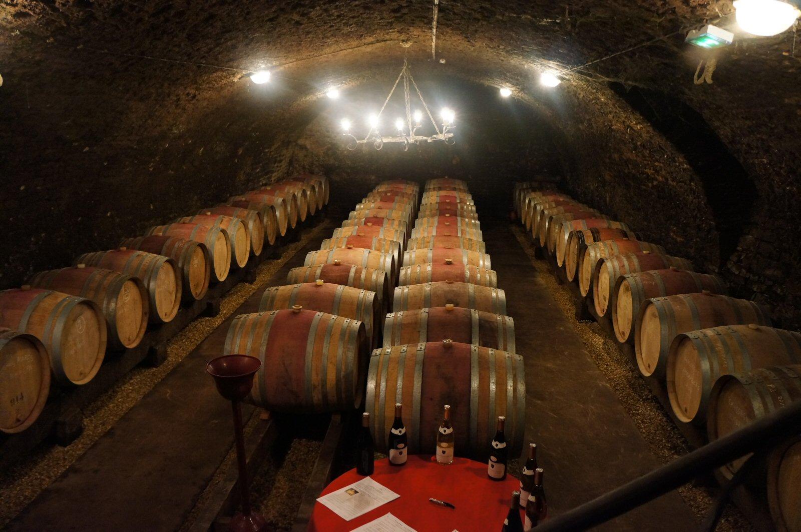 Profile: Domaine Pierre Naigeon (Gevrey) – Burgundy-Report